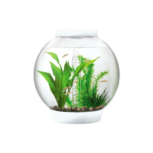 Baby Biorb 15 Litre & Light